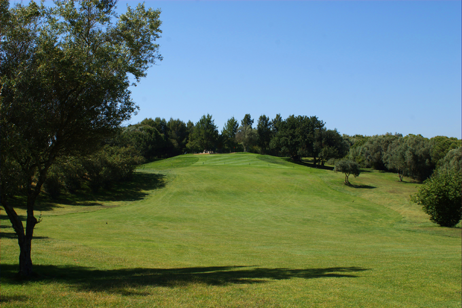 Pestana Alto Golf fairway