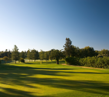 Pestana Alto Golf overview